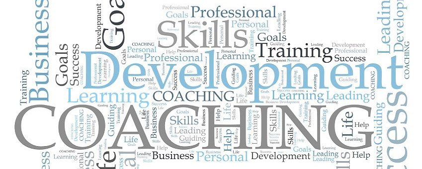 Coaching New or Transitioning Executives
